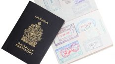 How Long Does It Take To Get Skilled Worker Visa Canada?